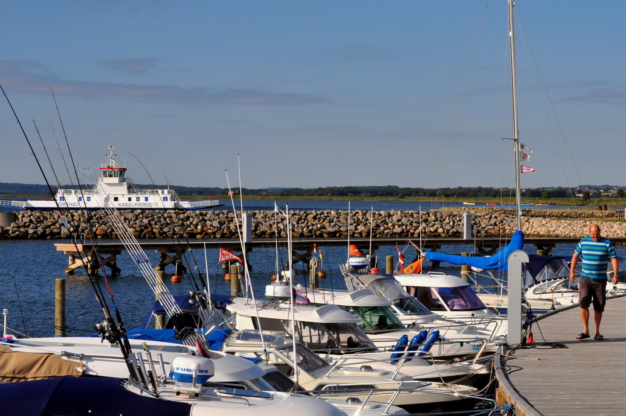 Udbyhøj Lystbådehavn - image Udbyhøj-Lystbådehavn-med-kig-ud-over-Randers-Fjord on https://www.vildmedvand.dk