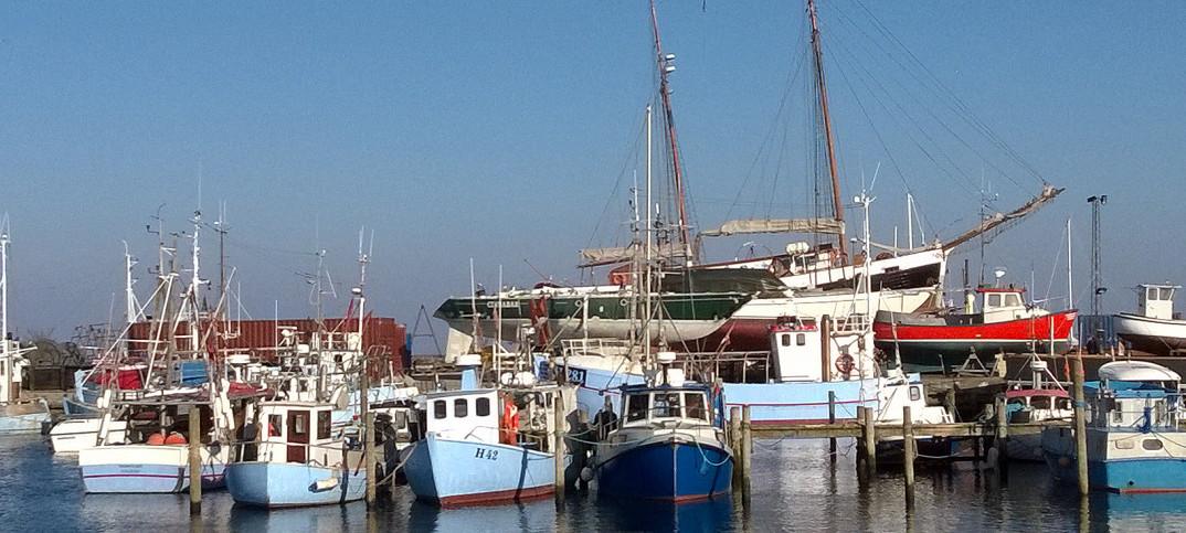 Havnen 6 - image gillelejehavn on https://www.vildmedvand.dk