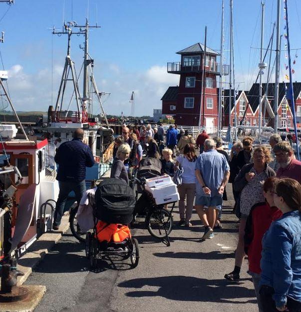 Havnens Dag på Bagenkop Havn – OUTDOOR oplevelser for hele familien - image HD1 on https://www.vildmedvand.dk