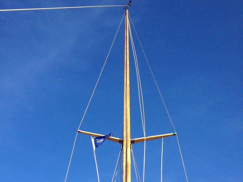 Fjordtri - image mast-_bred on https://www.vildmedvand.dk