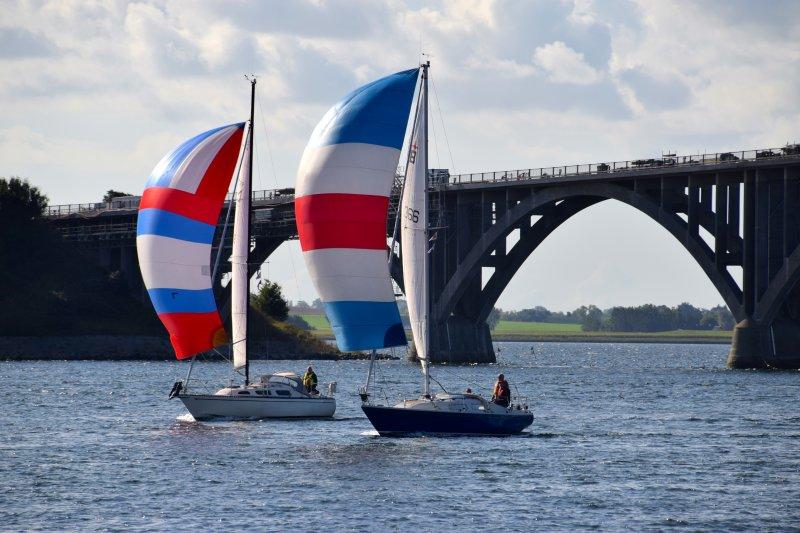 Blå Flag – Fang og smag – Velkommen på Havnen - image DSC_0774 on https://www.vildmedvand.dk