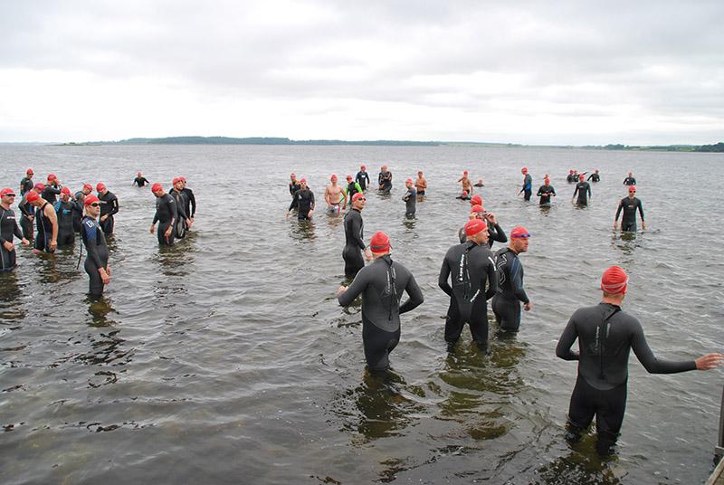 Fjordtri - image Fjordtri on https://www.vildmedvand.dk