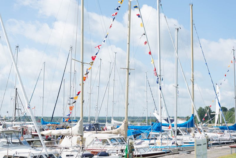 Blå Flag – Fang og smag – Velkommen på Havnen - image Vild-med-vand-2017-004-1 on https://www.vildmedvand.dk