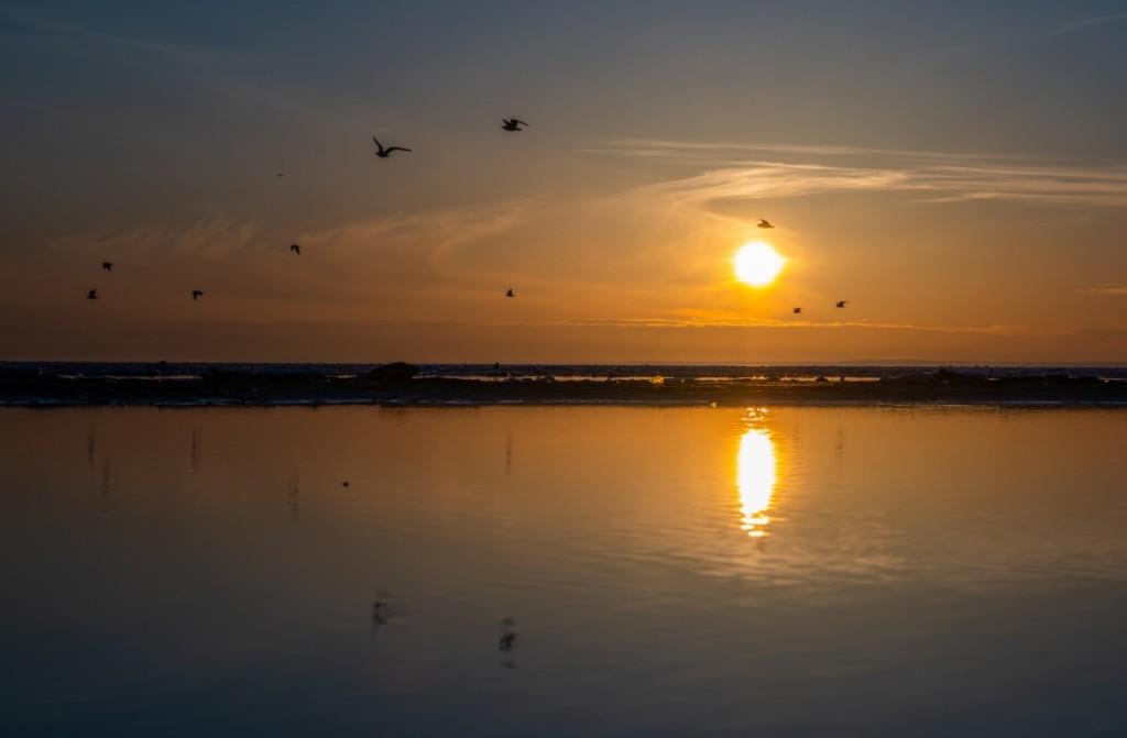 solnedgangstræf