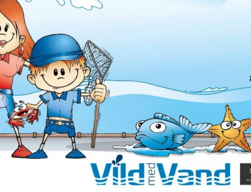 Nordea-fonden støtter Vild med Vand i nyt toårigt forløb