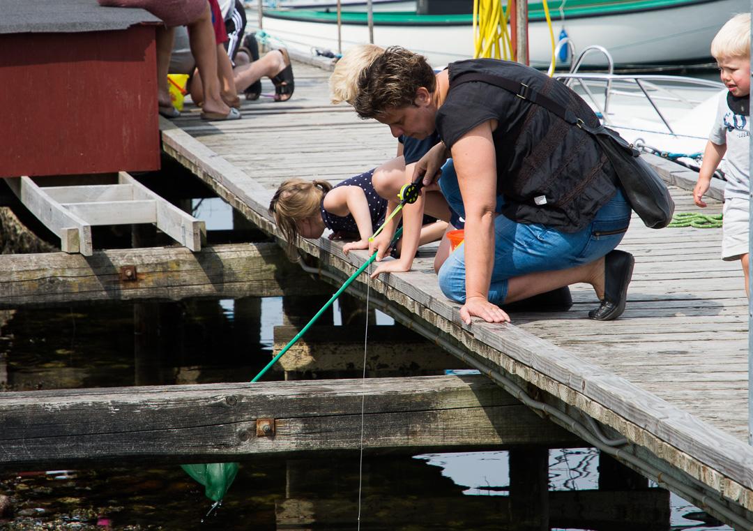 Fang en krabbe i Skudehavnen 1